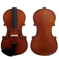 GLIGA I VIOLIN OUTFIT 4/4 WITH PROFESSIONAL SET UP