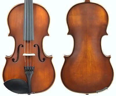 Enrico Student Plus II Violin Outfit WITH PROFESSIONAL SETUP