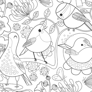 Bright Birds colouring-in sheet