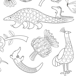 Rollerdog Pangolins colouring-in sheet
