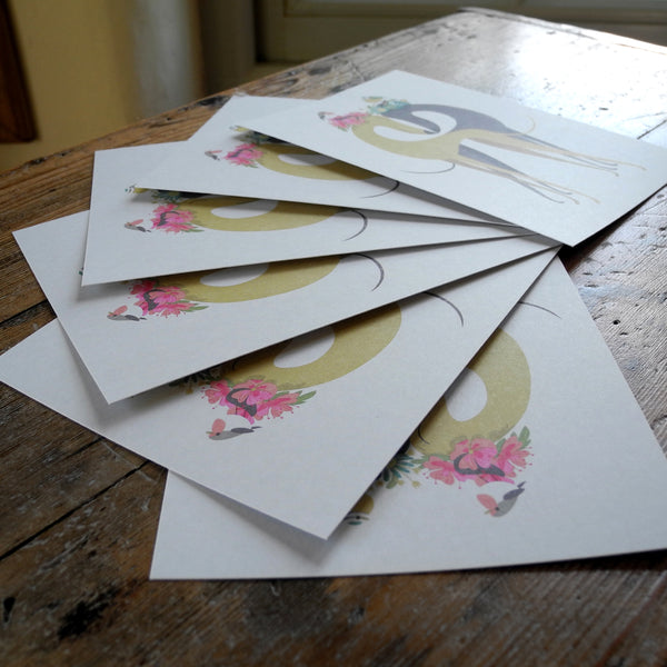 Set of 6 Hounds of Love postcards by Rollerdog