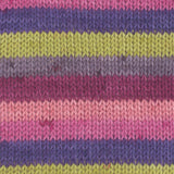 Gründl Hot Socks Colour Shade 402 - A self striping yarn containing grey, green, purple and pink shades