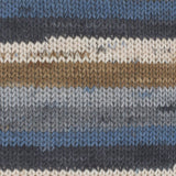 Gründl Hot Socks Colour Shade 419 - A self striping yarn containing blue, greys, white and brown.