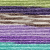Variegated yarn containing green and blue, purple shades and brown and white