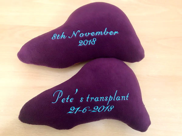Liver handmade plush toy / pillow / cushion