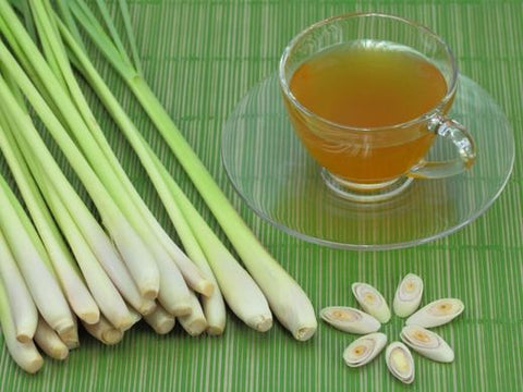 Lemongrass Tea Bagged