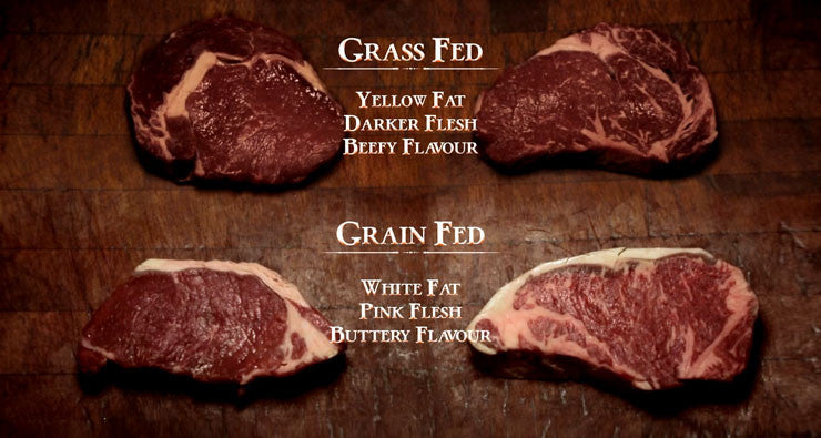 Grass-fed, or grain-fed?