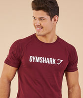 Gymshark Apollo T-Shirt - Port/White 11