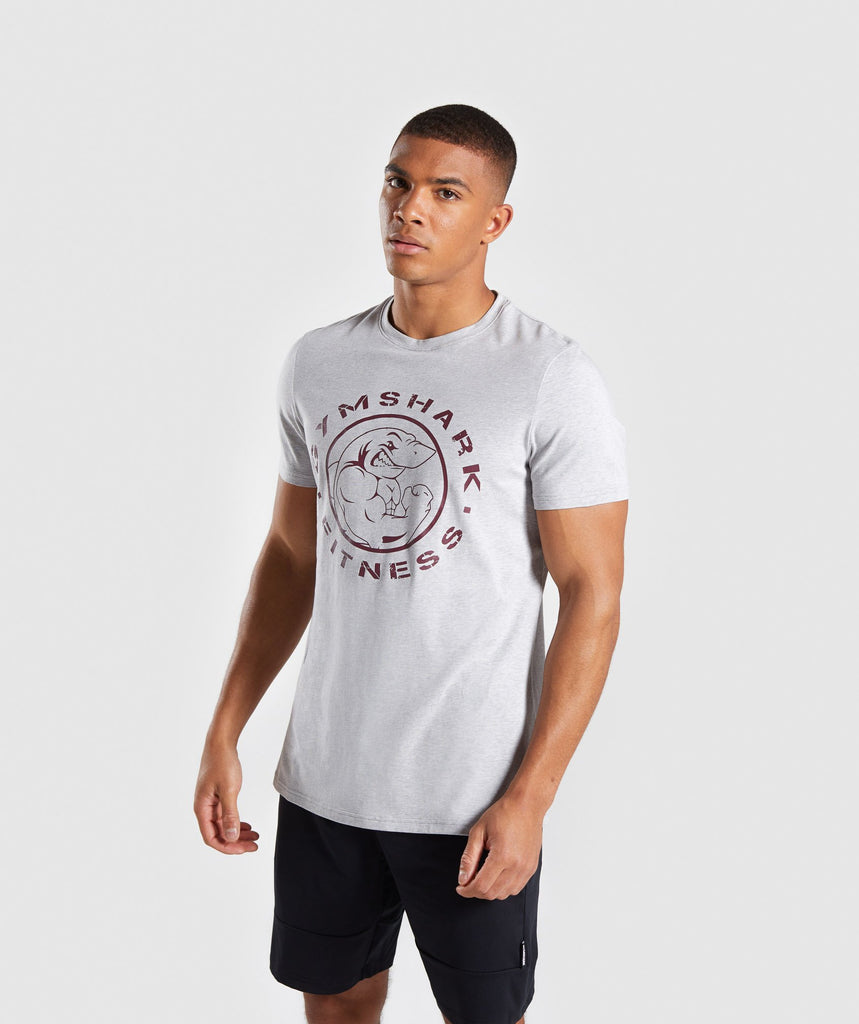 Gymshark Legacy T-Shirt - Light Grey Marl 1