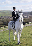 TOHH Side Saddle Habit
