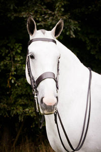 The Jayne Ross Hunter Snaffle Bridle.