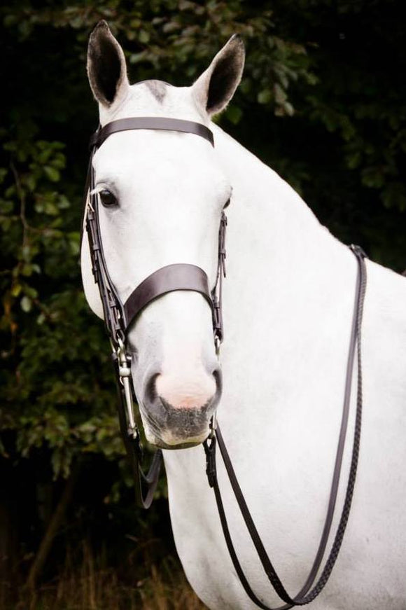 Hunter Double Bridle.