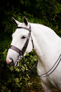 The Jayne Ross Hunter Double Bridle.
