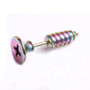 Steel Screw Stud Earrings