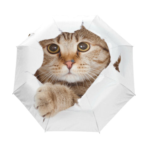 Peek-a-boo Cat Umbrella