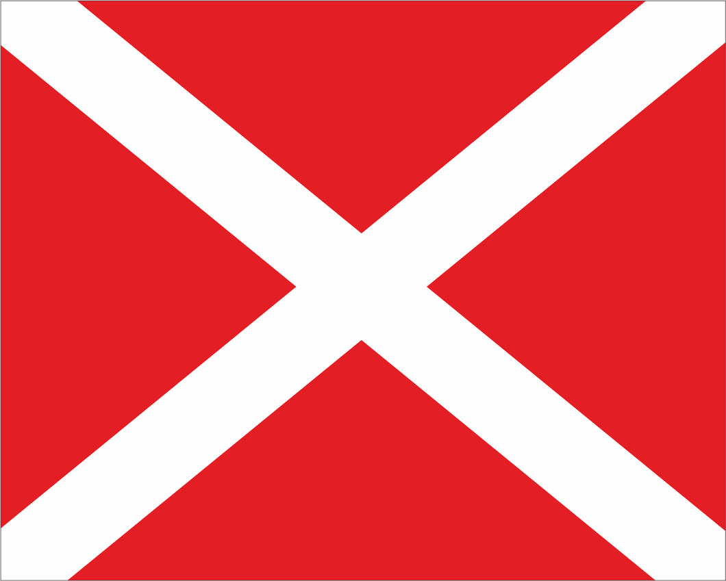 Red with White X 'SAFETY VEHICLE' Road Race Flag