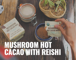 The Delicious Benefits of Mushroom Hot Cacao with Reishi
