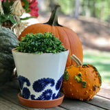 Porto Paisley Medium Flower Pot (with Saucer)