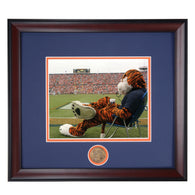 Auburn Tiger Mascot Aubie in Jordan Hare Stadium watching another Auburn Football Victory Photo