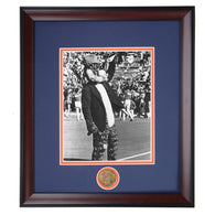 Auburn Tigers Aubie in Houndstooth Hat Framed Photo
