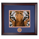 Auburn Football Tiger Eyes Framed Photo