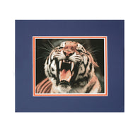 Auburn Tiger Mascot Framed Photo