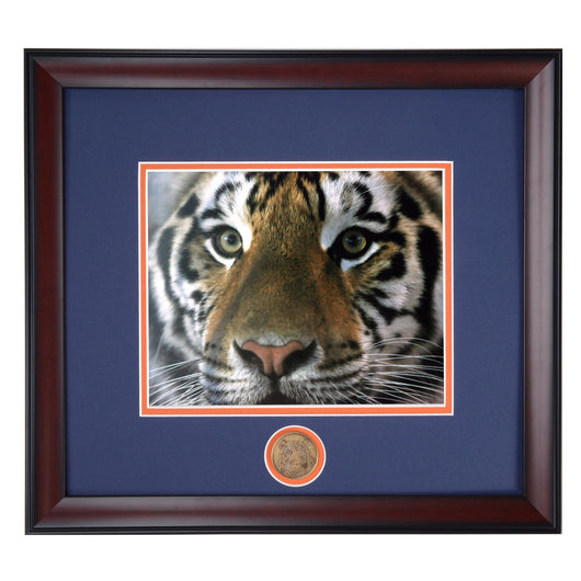 Auburn Tiger Preying Eyes Framed Mascot Photo