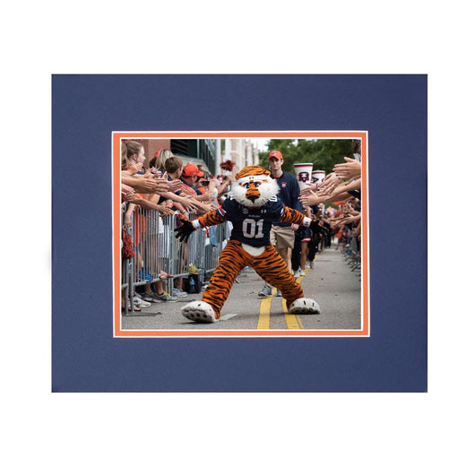 Aubie at Tiger Walk Framed Photographic Print