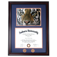 Auburn Diploma Frame with Tiger Preying Eyes Photo in Walnut or Mahogany - Quick and Easy Installation!