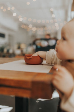 Baby Bowl | Suction Bowl| Ginger
