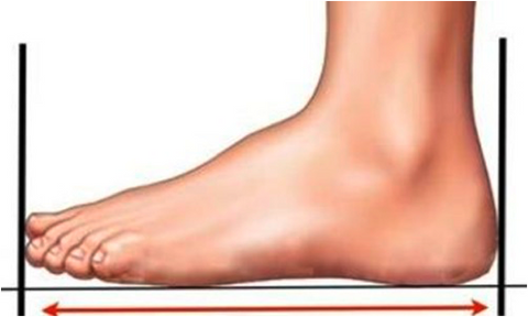 how to measure foot length