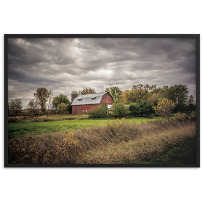Country Dreaming Framed Print