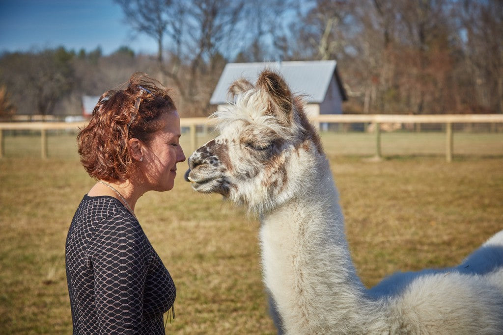 dolly the llama, woodstock farm sanctuary, nomadic hearts clothing co.