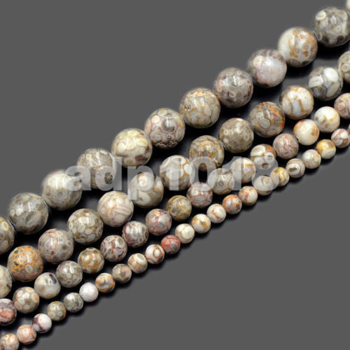 Natural Flowery Cowry Fossil Gemstone Round Loose Beads on a 15.5