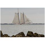 Spirit of Carolina | Charleston, SC | Premium Canvas Gallery Wrap