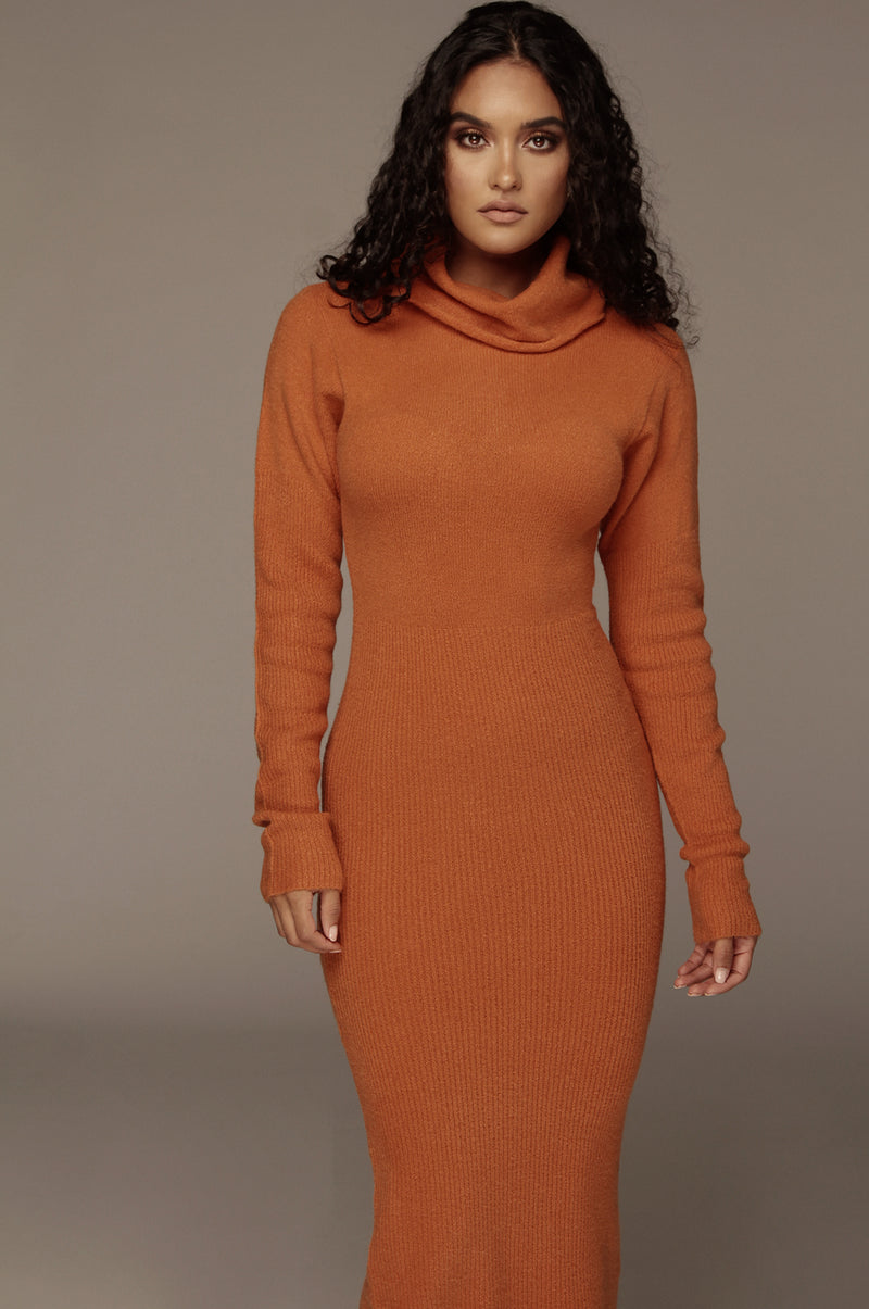 Pumpkin Aubrey Turtleneck Sweater Dress
