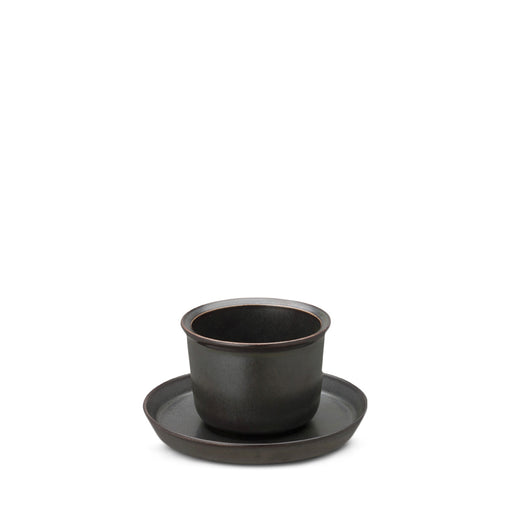 Leaves to tea cup and saucer black