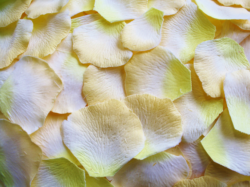 2-Tone Yellow Silk Rose Petals, 200 count