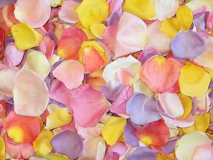 Rose Petals, Blossom Blend of Real Freeze Dried Petals for Pathways, 70 cups