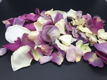 Load image into Gallery viewer, Rose Petals, Real Ivory and Purple Petals for Pathways, 70 cups