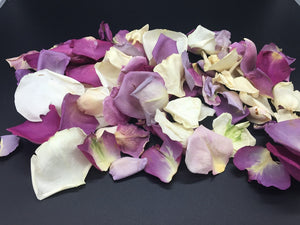 Rose Petals, Real Ivory and Purple Petals for Pathways, 70 cups