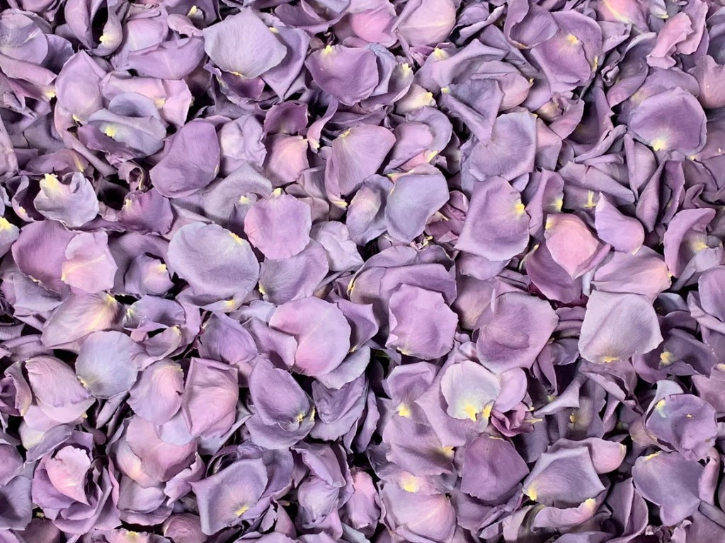 Freeze Dried Rose Petals - Mystic