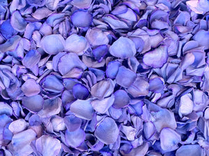 Freeze Dried Rose Petals - Purple dyed