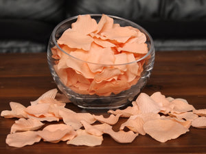 Peachy Silk Rose Petals, Value Pack 1000 Petals