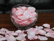 Load image into Gallery viewer, Floating Pink Silk Rose Petals, 100 petals