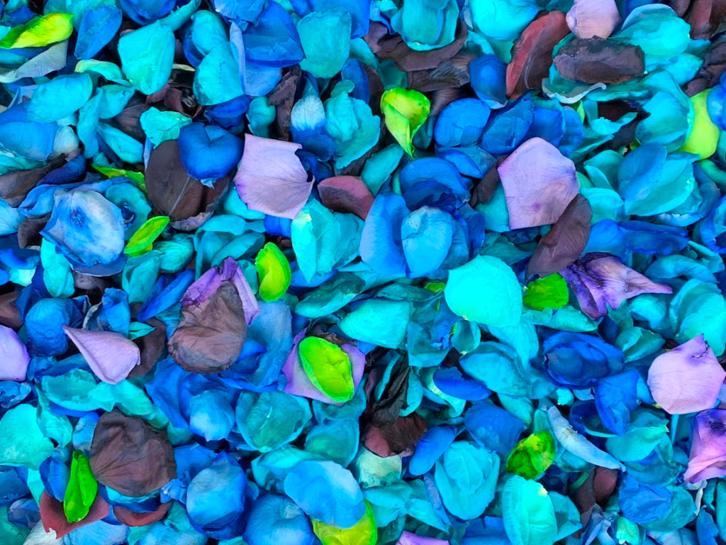 Rose Petals, Dyed Colors, Real Freeze Dried Bulk Budget Petals, 100 cups