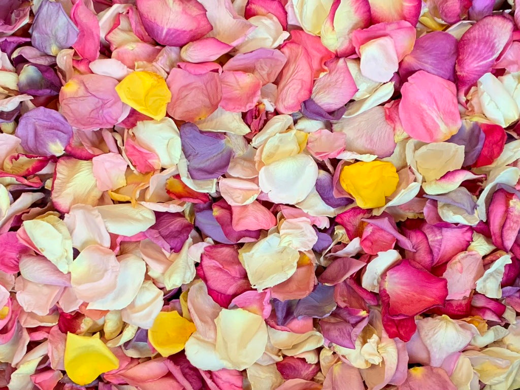 Rose Petals, Light Colors, Real Freeze Dried Bulk Budget Petals, 100 cups