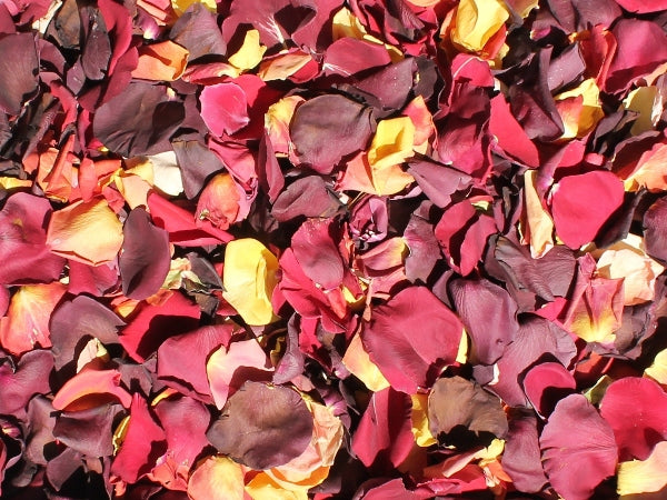 Rose Petals, Harvest Blend of Real Freeze Dried Petals for Pathways, 70 cups