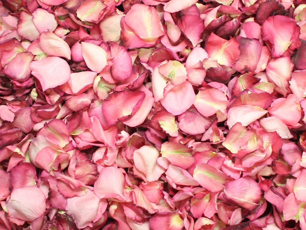 Rose Petals, Real Pink Petals for Pathways, 70 cups