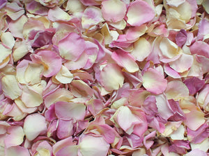Rose Petals, Real Pale Pink Petals for Pathways, 70 cups